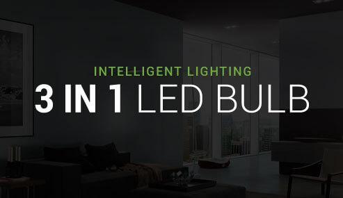 3 in 1 LED Bulb