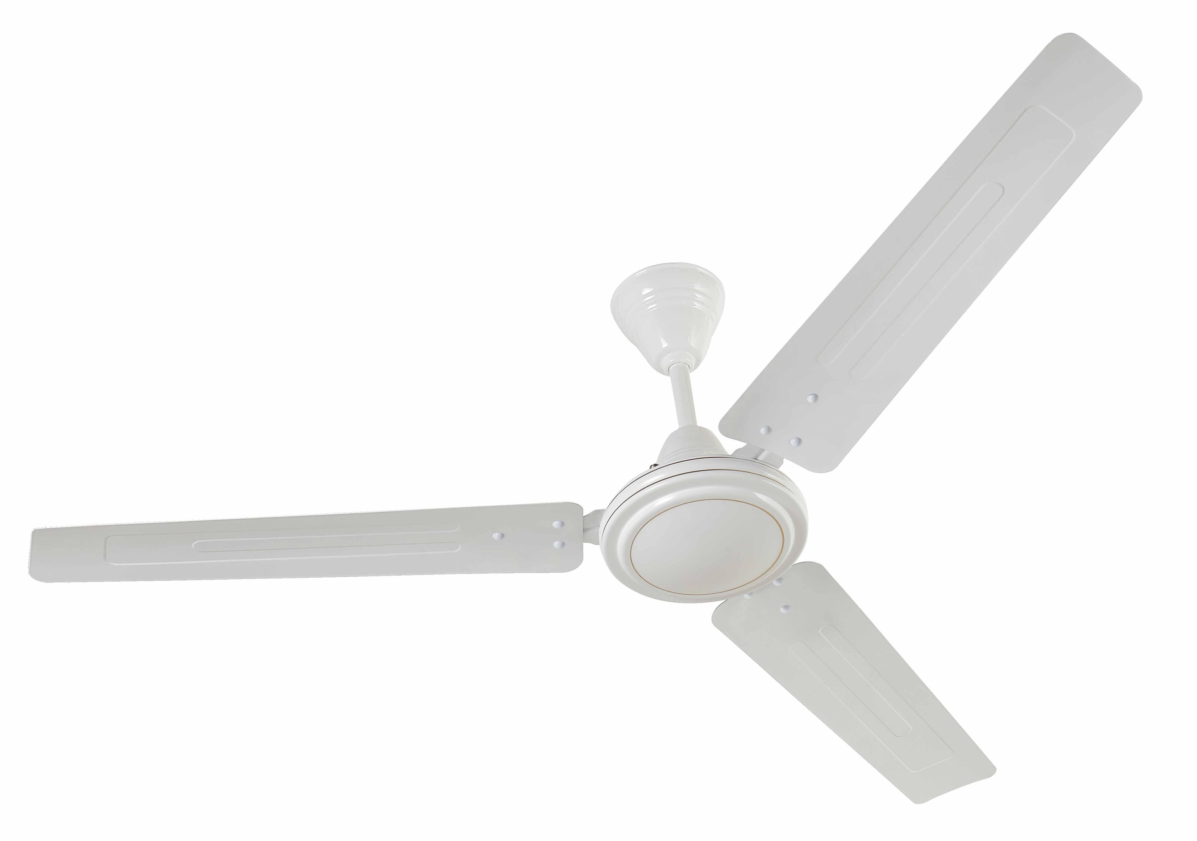 Hawk Fan